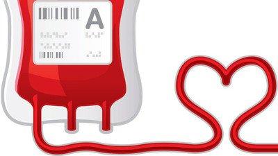 Dia Nacional Do Doador De Sangue Saiba Mais Sobre Essa Data