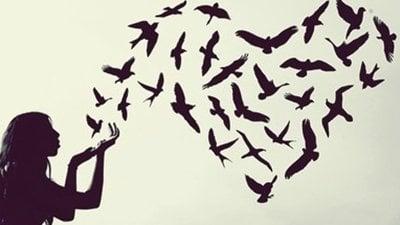 Eu Quero Paz Sinta O Amor Em Seu Coração