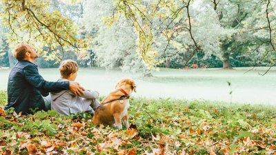 Homem com menino e cachorro sentados em grama cheia de folhas secas, olhando para um rio em sua frente.
