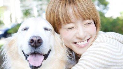 Novo Frases Para Fotos Com Cachorros De Estimação