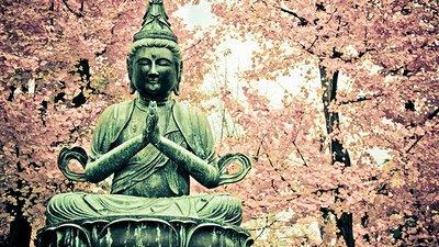 Reflexões Budistas Para O Dia A Dia Inspire Se Para Ser Feliz