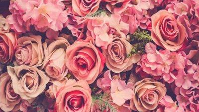 Um Mar De Rosas Para Você Declare Se De Maneira Especial