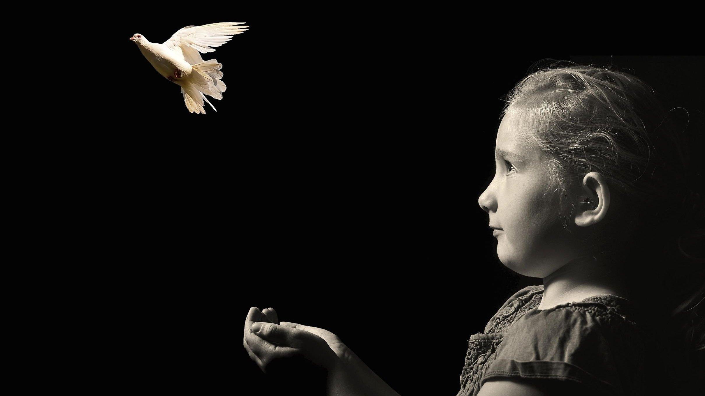 Menina soltando pomba branca que voa em sua frente.