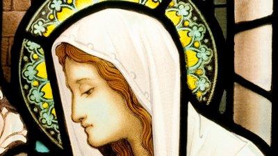 Devoção No Dia De Nossa Senhora Aparecida é Uma Honra Tê La Como Mãe