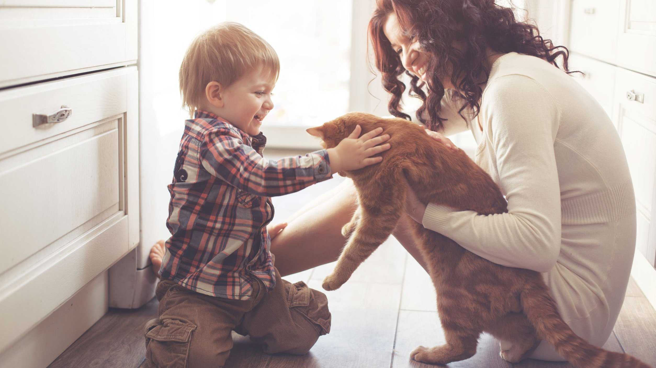 Mãe segurando gato para o filho fazer carinho