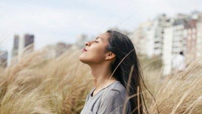 Eu Só Quero Paz Um Coração Tranquilo é Um Coração Feliz