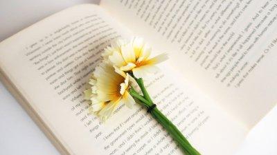 Frases Espíritas A Vida é Um Eterno Aprendizado