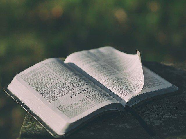 5 Versículos Da Bíblia Para Usar No Seu Casamento: Legendas Da Bíblia. Versículos E Inspirações Para Suas Fotos