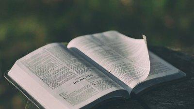 Legendas Da Bíblia Versículos E Inspirações Para Suas Fotos