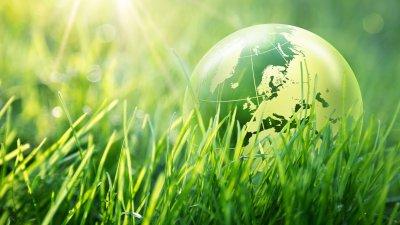 Pequeno globo terrestre no meio da grama verde.