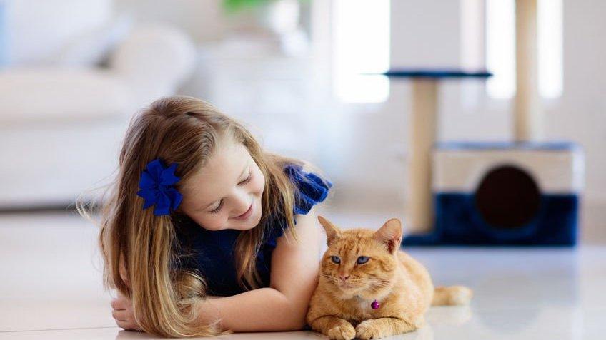 Menina deitada ao lado de gato