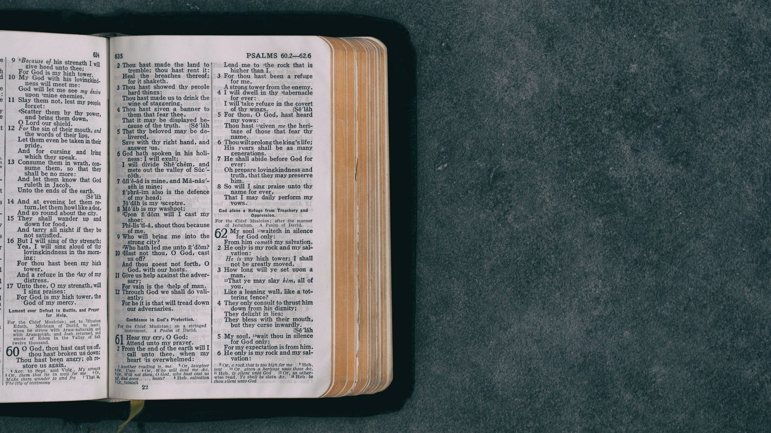 Bíblia aberta em metade da imagem, e na outra metade, apenas a superfície verde onde ela se encontra.