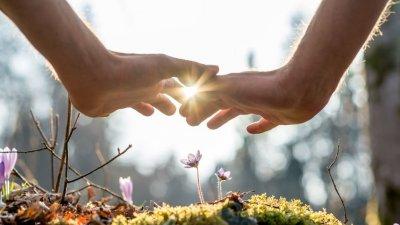 Mãos sobre pequena flor