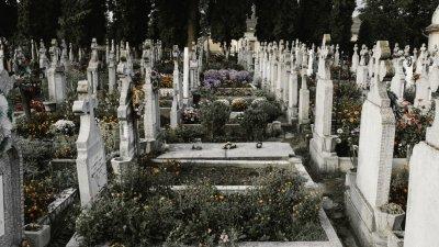 Cemitério com muitas flores em todos os túmulos.