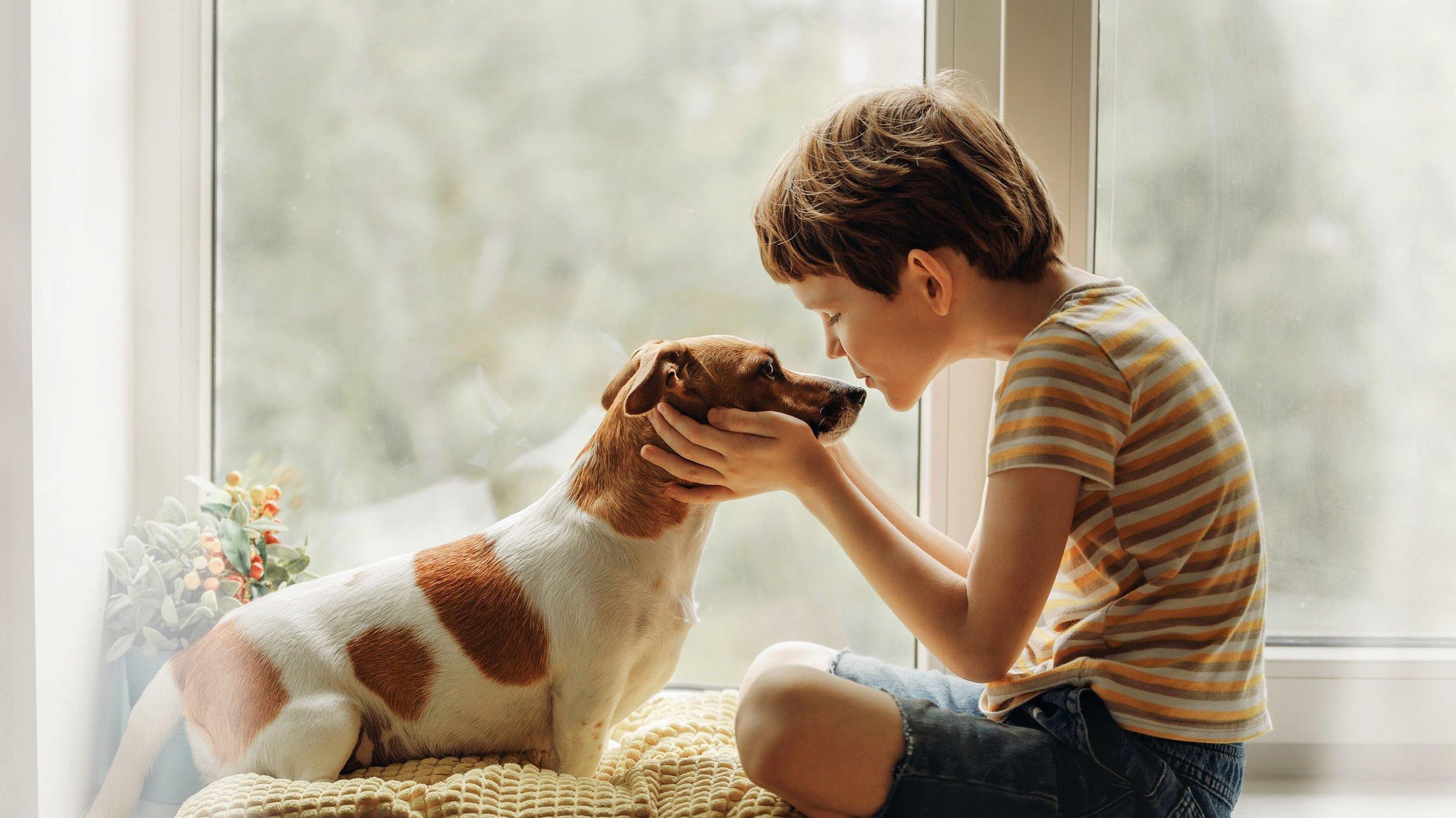 Criança beijando o cachorro