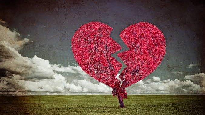 Imagem árvore em forma de coração partido