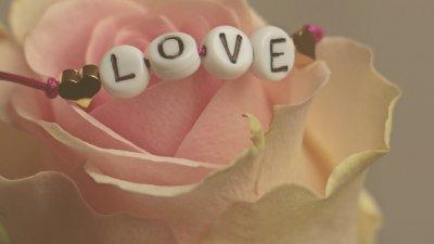 Foto de flor e palavra amor escrita em inglês