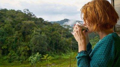 Mulher tomando café olhando para floresta