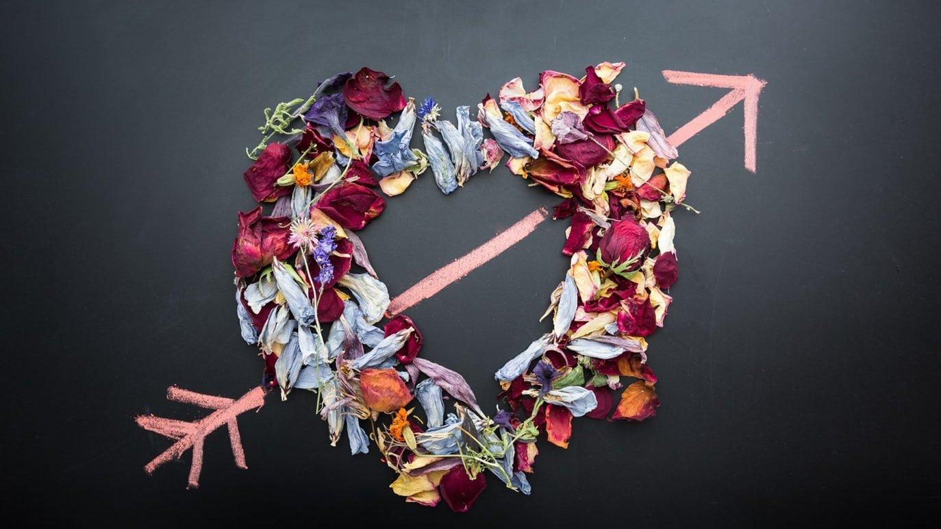 Coração formado com pétalas de rosa e uma flecha desenhada entre ele.