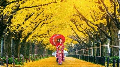 Mulher japonesa com traços tradicionais em meio a árvores amarelas