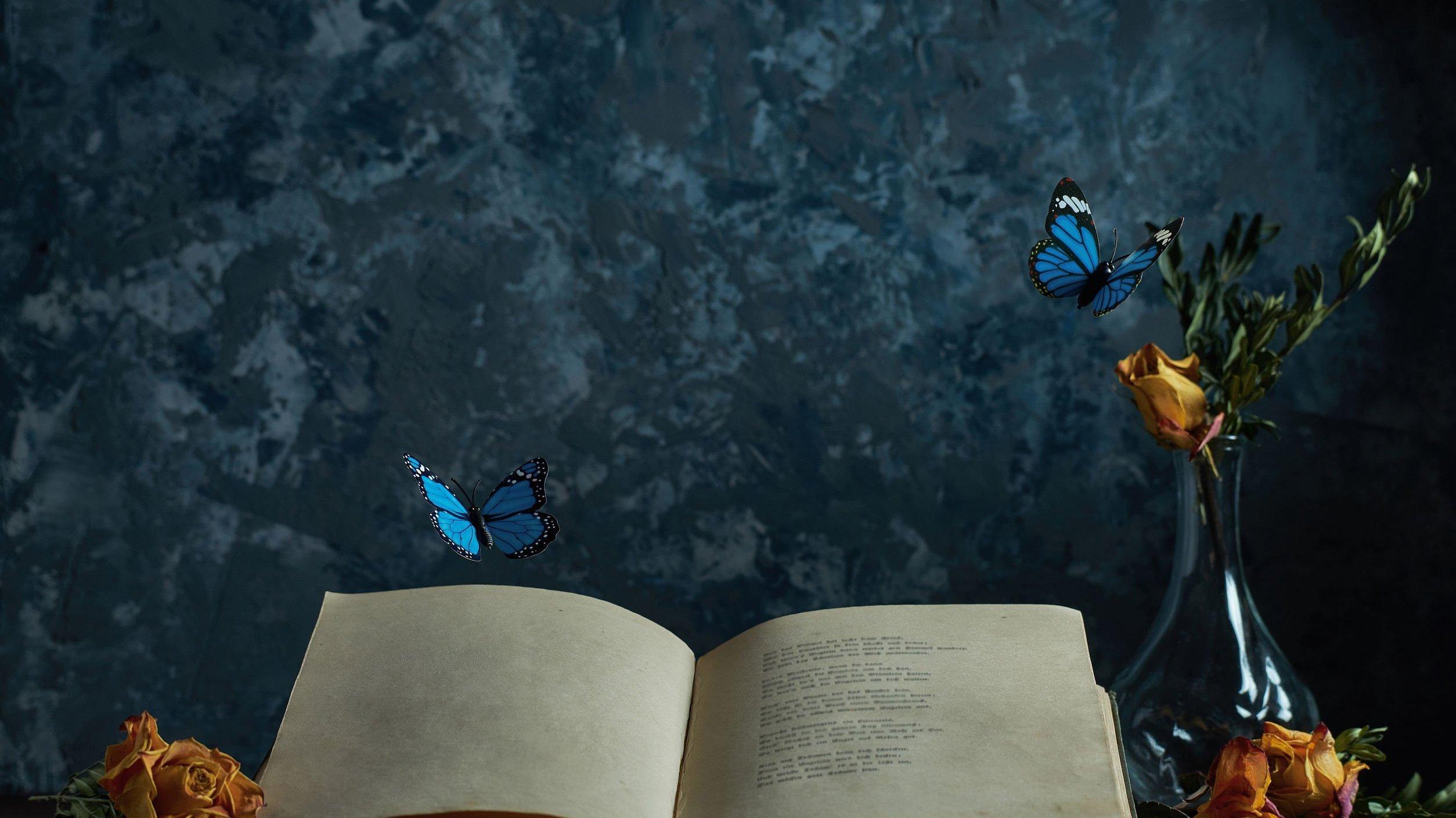 Borboletas azuis voando sobre bíblia aberta em cima de mesa.