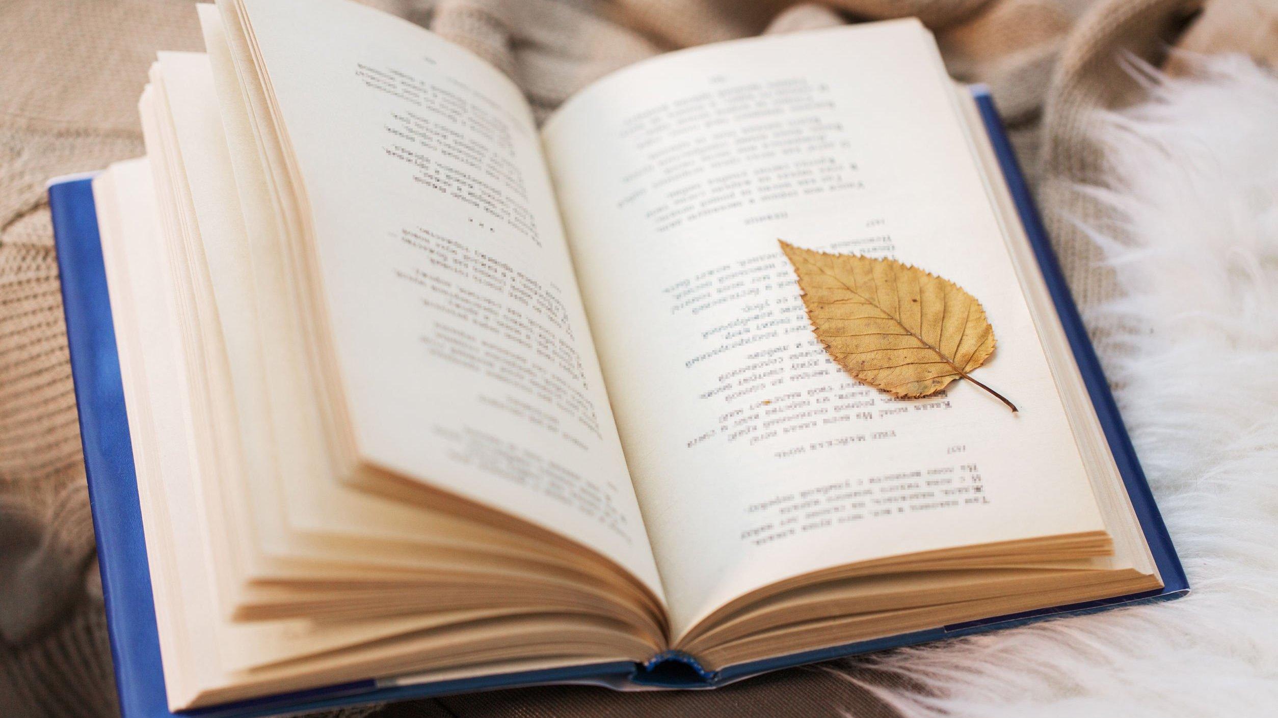 Livro aberto de poesias com uma folha de árvore
