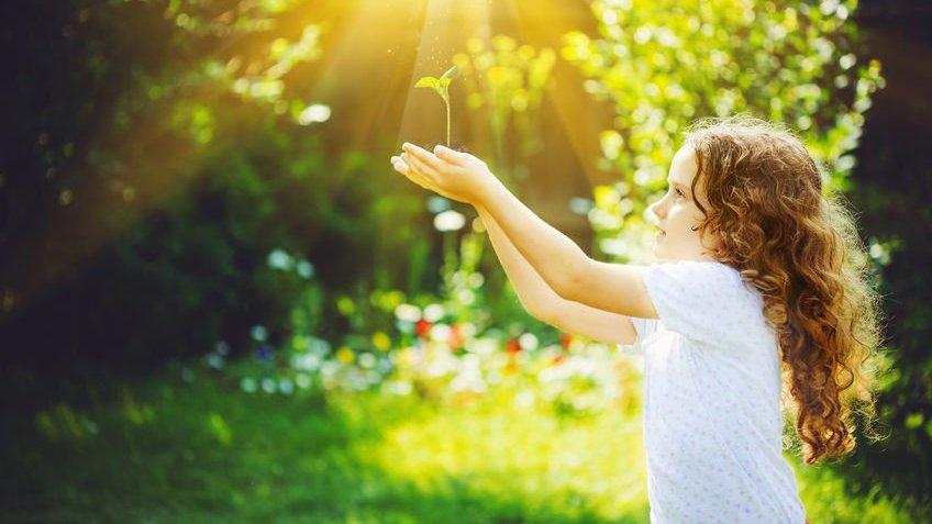 Criança segurando muda de planta sob o sol